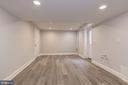 Basement Family Room - 1810 RANDOLPH ST NE, WASHINGTON