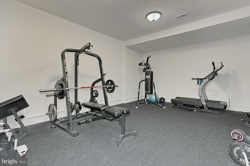 Exercise Room - 22694 CREIGHTON FARMS DR, LEESBURG