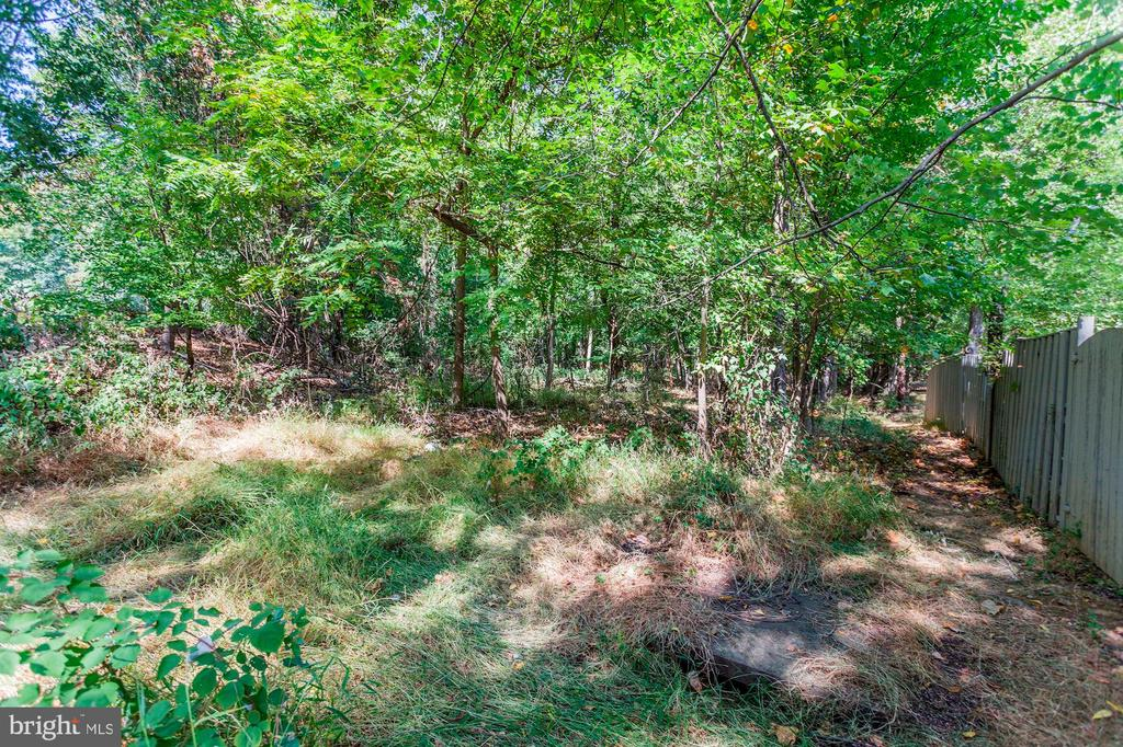Community Wooded Area Behind Home - 1706 TYVALE CT, VIENNA