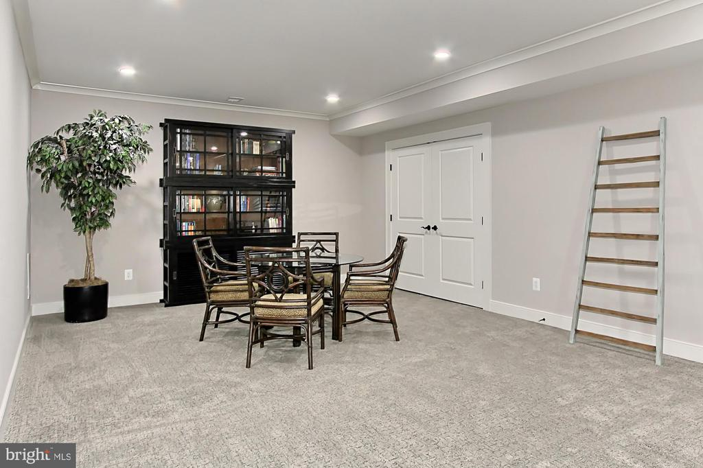 Double doors to huge storage or play area - 900 GLYNDON ST SE, VIENNA