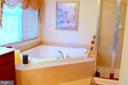 View 2 Master Bath - 22532 SCATTERSVILLE GAP TER, ASHBURN