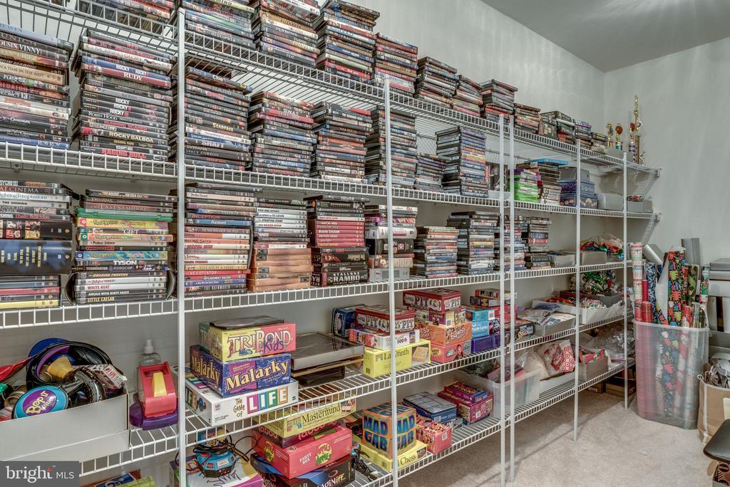 Lower level game closet - 19607 ABERLOUR LN, LEESBURG