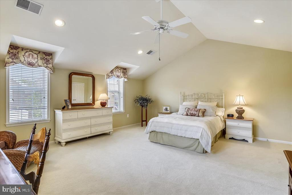 Bonus-sized Bedroom~ with cathedral ceiling - 43433 WILD DUNES SQ, LEESBURG
