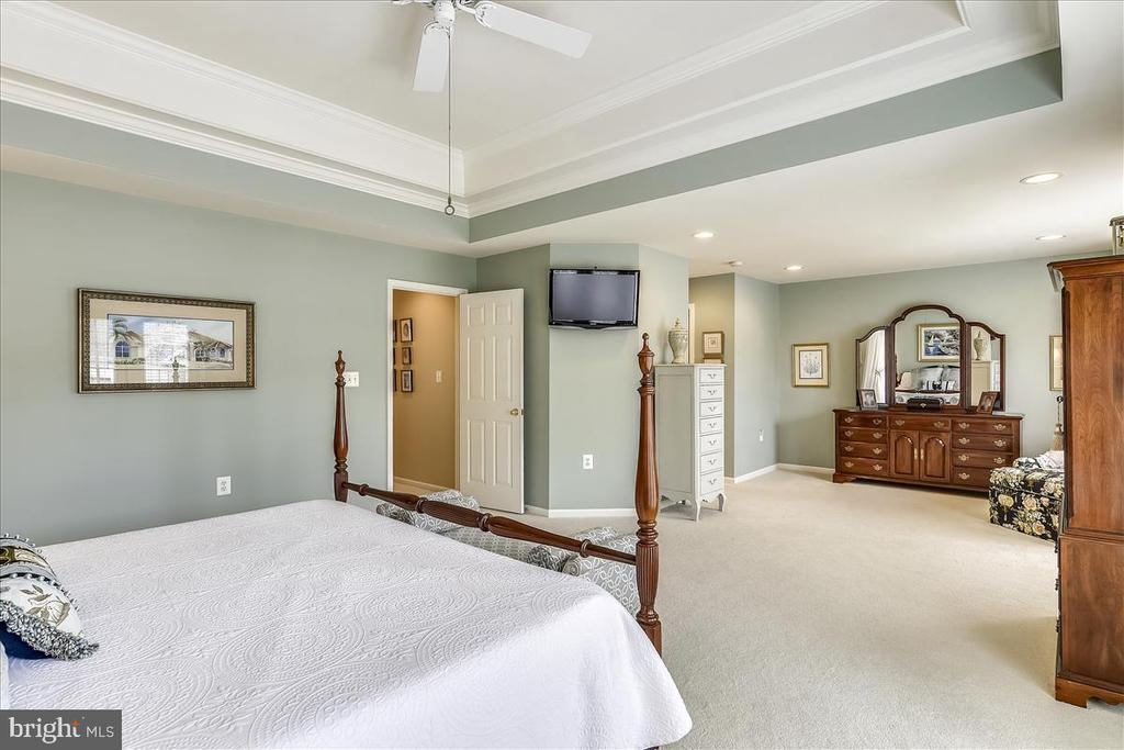 Master Suite with Tray Ceiling - 43433 WILD DUNES SQ, LEESBURG