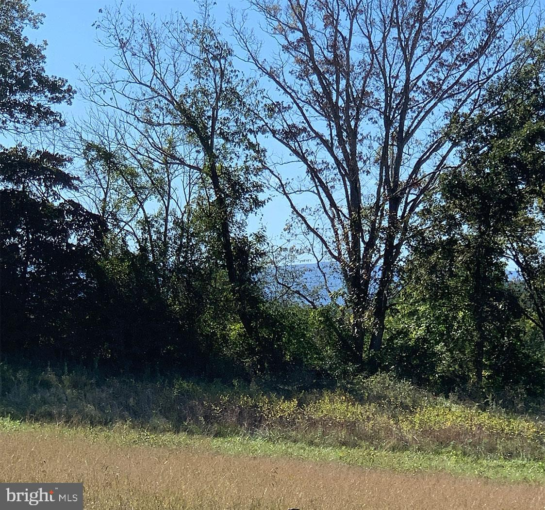 Terreno por un Venta en Amissville, Virginia 20106 Estados Unidos