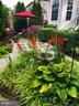 Backyard - 44343 SILKWORTH TER, ASHBURN