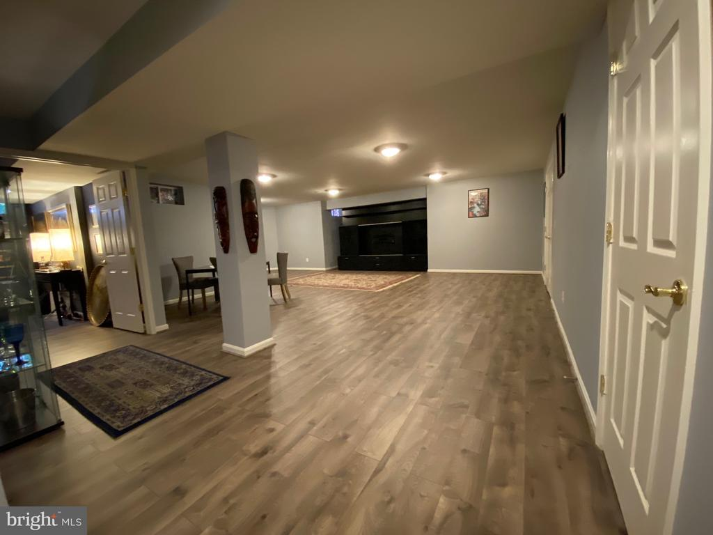 Basement - Recreation Room - 44343 SILKWORTH TER, ASHBURN