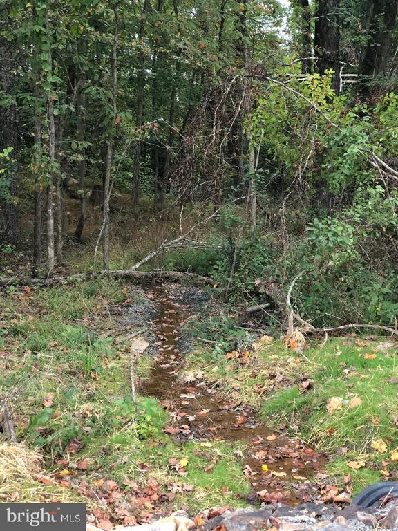 Small creek on property - 29366 OLD OFFICE ROAD, RHOADESVILLE