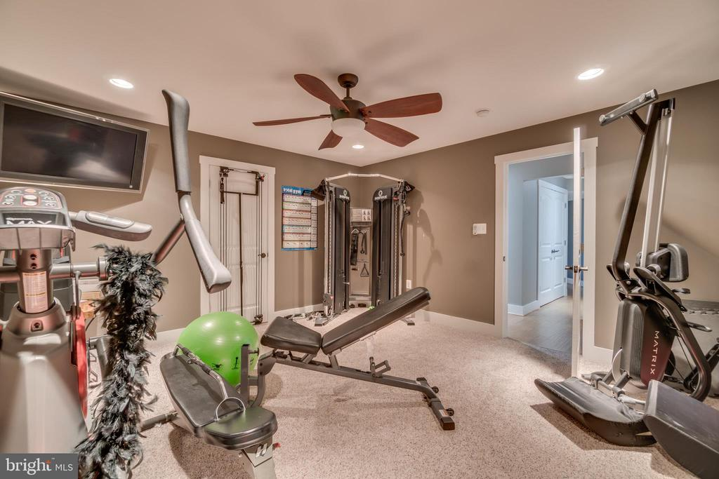 Home Gym with Ceiling Fan & Recessed Lighting - 31 LAUREL HAVEN DR, STAFFORD