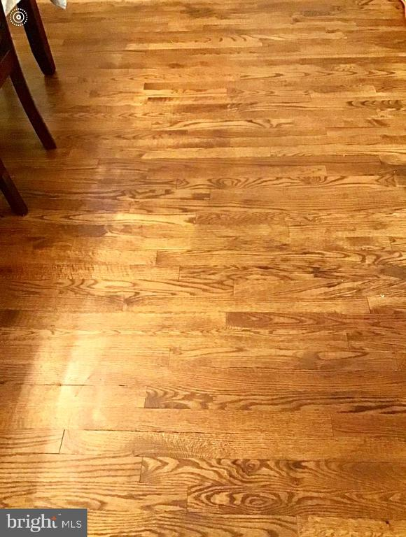 Hardwood floor throughout the house. - 6009 LADD RD, SUITLAND