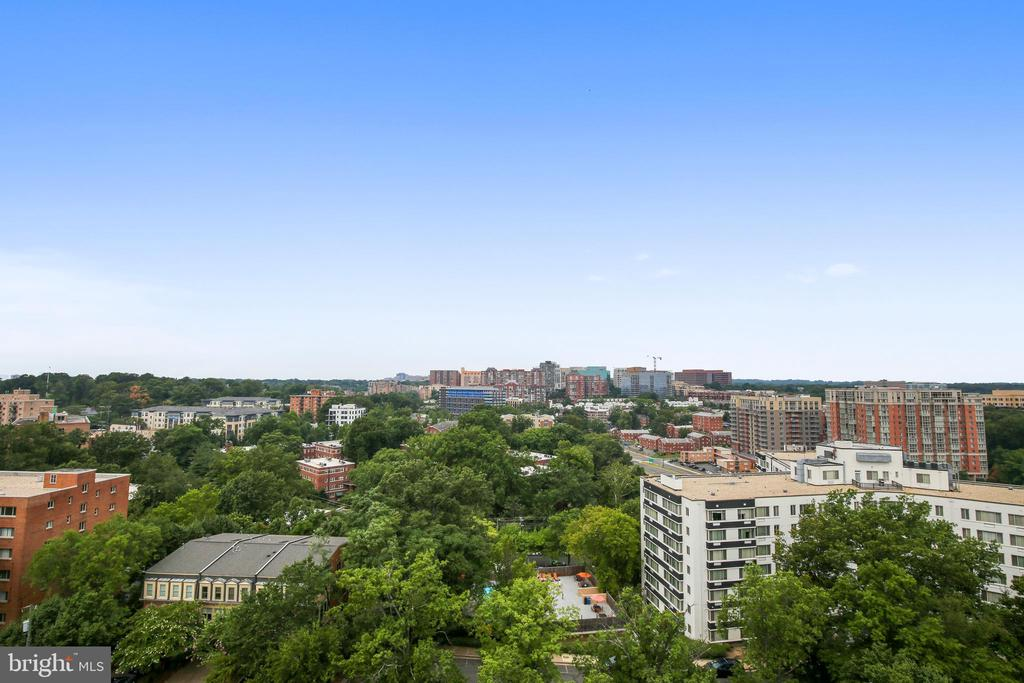 View from rooftop - 1401 N OAK ST #307, ARLINGTON