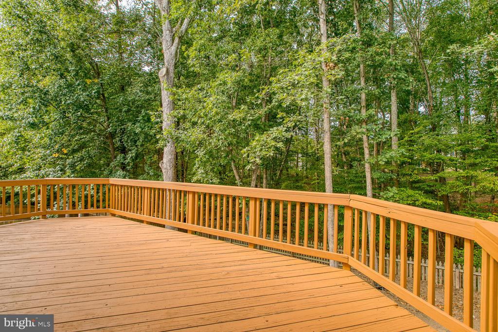 Large Deck Overlooks Trees - 7 EMERALD DR, FREDERICKSBURG