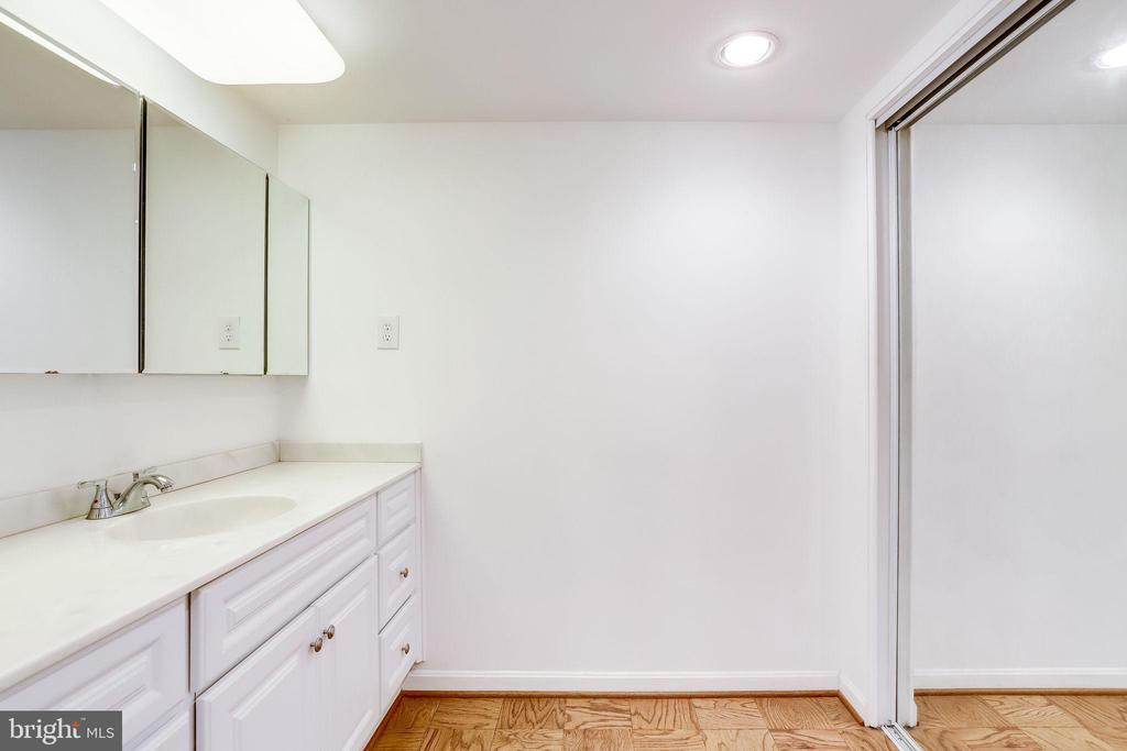 Closets have mirrored doors and ELFA systems - 3800 FAIRFAX DR #302, ARLINGTON