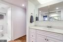 Dressing area and vanity - 3800 FAIRFAX DR #302, ARLINGTON