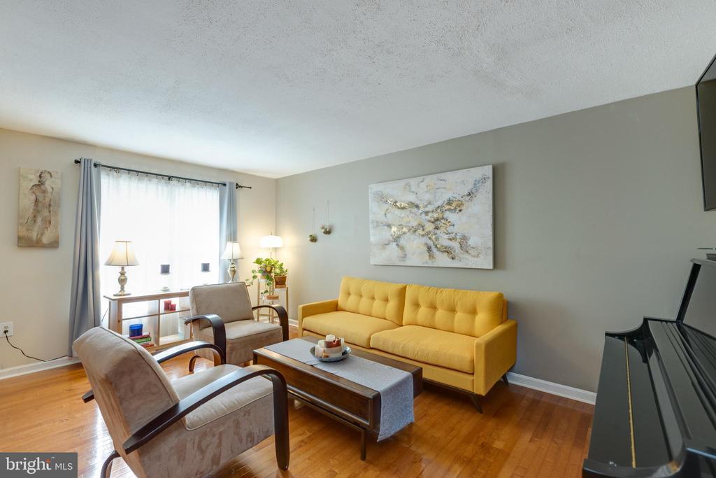 Light filled living room - 4449 HOLLY AVE, FAIRFAX