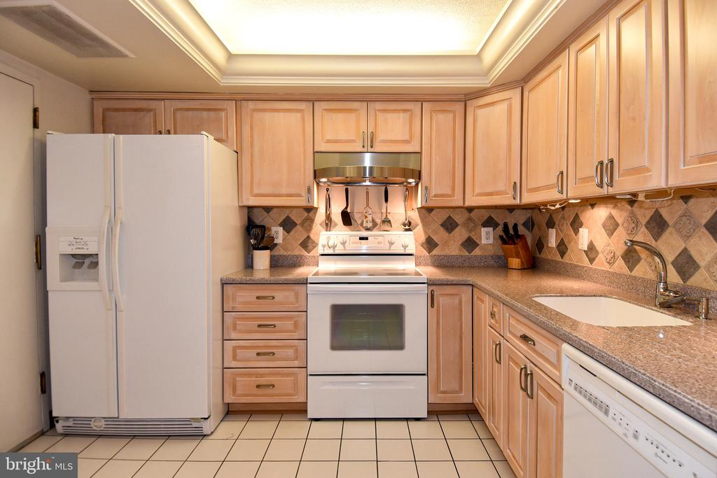 Kitchen - Loads of Cabinet Space & Separate Pantry - 1101 S ARLINGTON RIDGE RD #903, ARLINGTON