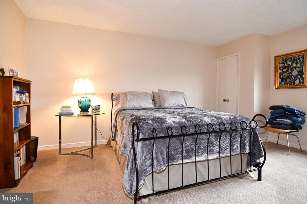 Spacious Master Bedroom with 100% Wool Carpeting - 1101 S ARLINGTON RIDGE RD #903, ARLINGTON