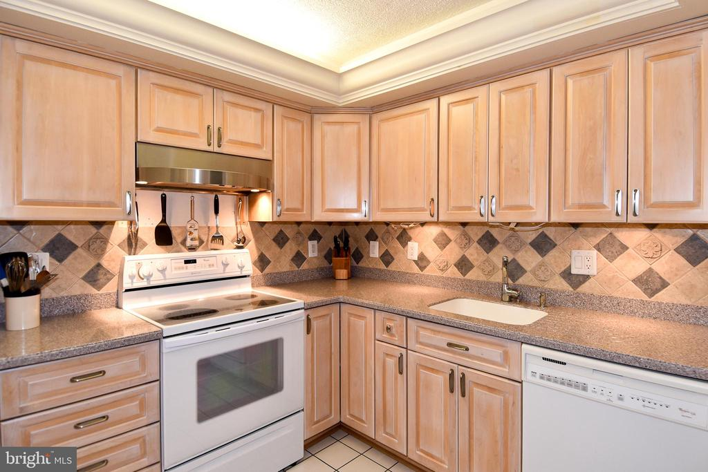 Kitchen - New Exhaust Fan & Loads of Counter Space - 1101 S ARLINGTON RIDGE RD #903, ARLINGTON