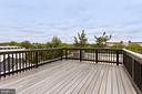 Roof top deck with view of the Capitol - 1709 INDEPENDENCE AVE SE #2, WASHINGTON