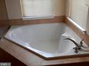 Master Bath Tub - 20953 DURYEA TER, ASHBURN