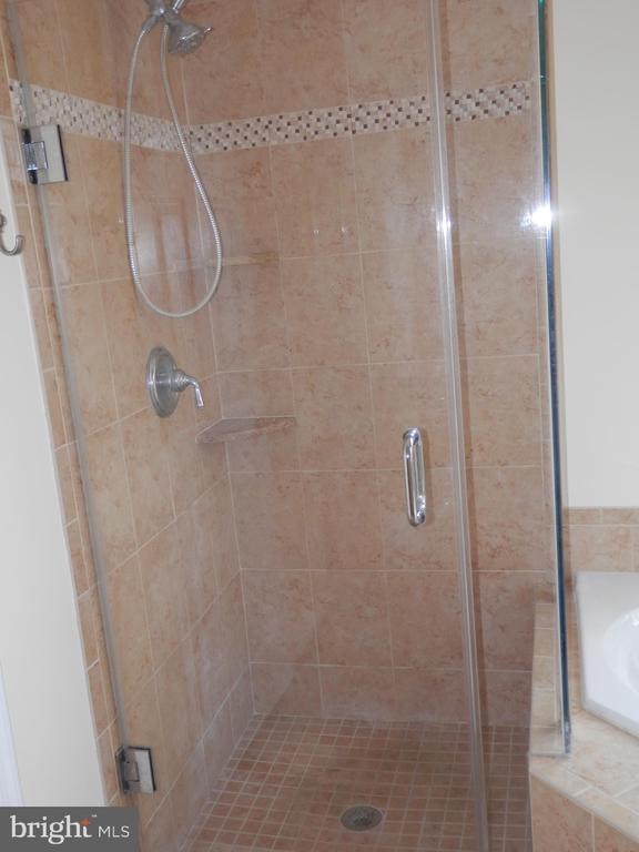 Master Beth Shower - 20953 DURYEA TER, ASHBURN