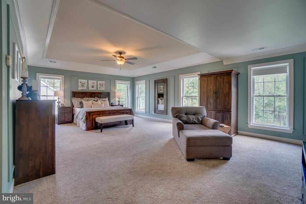 Truly a Master Suite - 33 GRISTMILL DR, STAFFORD