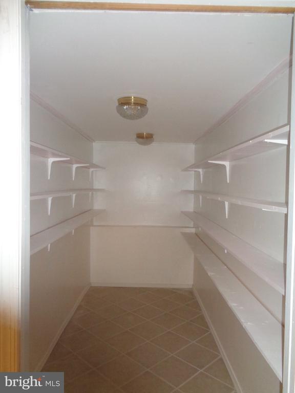 Lower Level Closet With Built in Shelving - 11111 STOCKADE DR, SPOTSYLVANIA