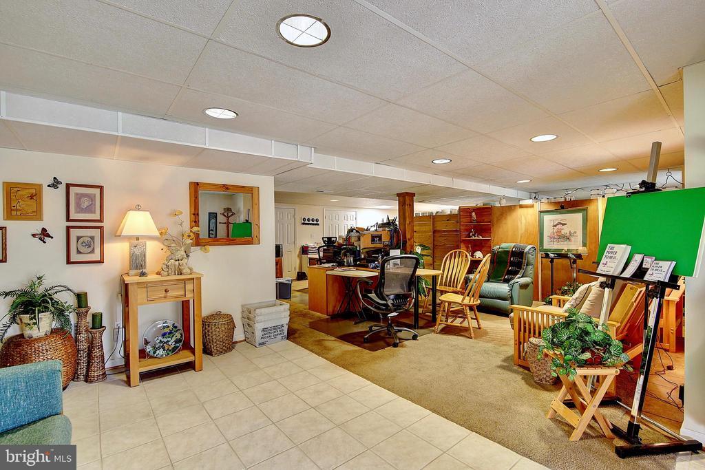 Lower Level Rec Room - 5449 MUSSETTER RD, IJAMSVILLE