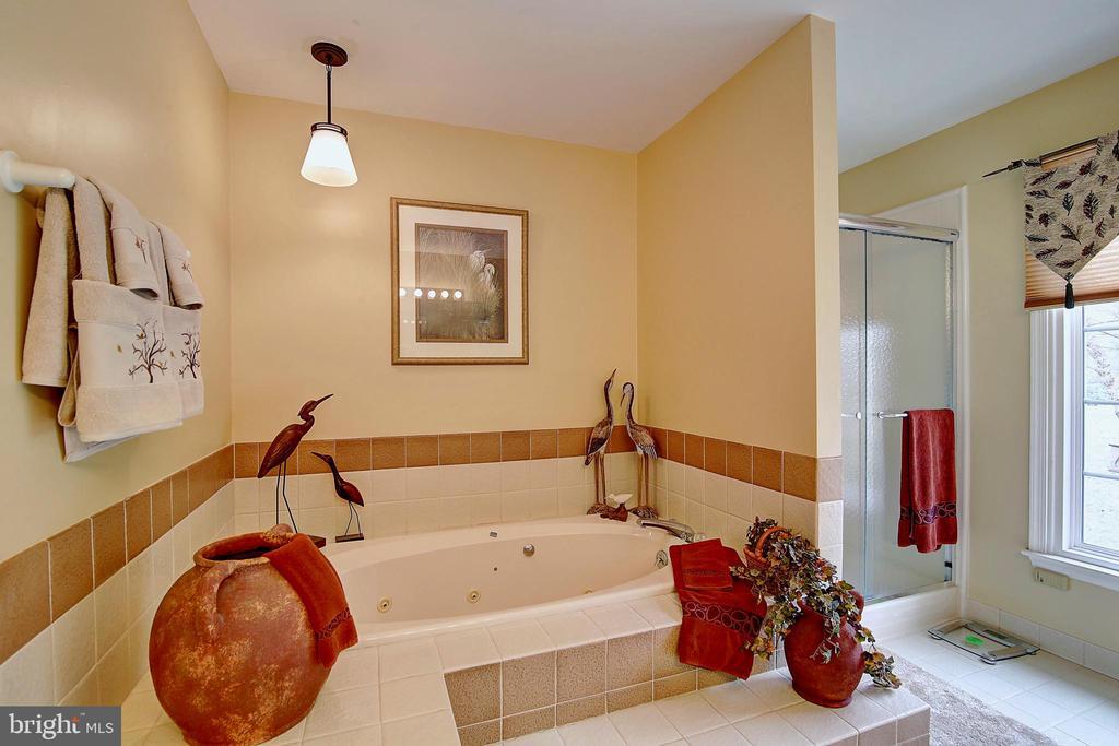 Master Bathroom - 5449 MUSSETTER RD, IJAMSVILLE