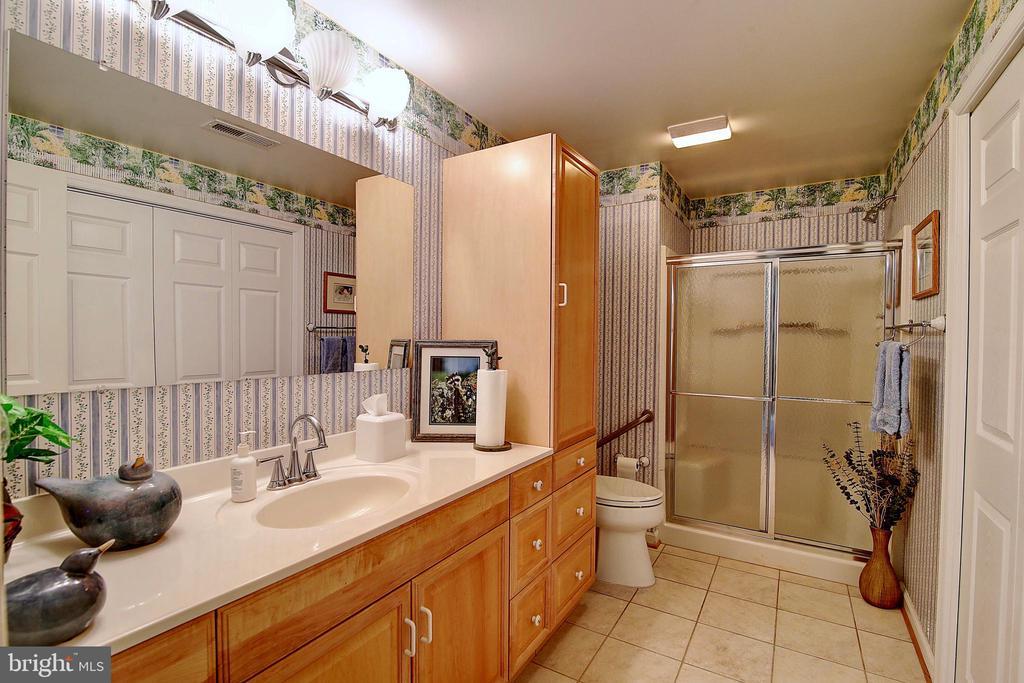 Lower Level Full Bathroom - 5449 MUSSETTER RD, IJAMSVILLE