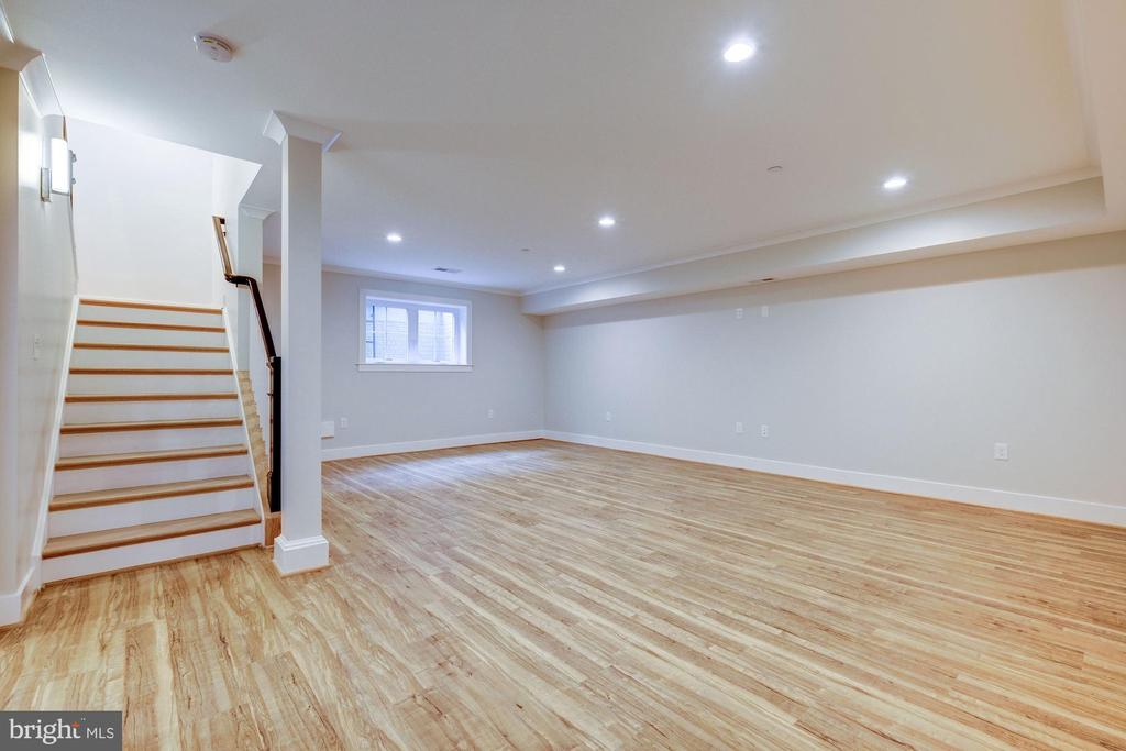 Fully Finished Basement - 9506 SEMINOLE ST, SILVER SPRING