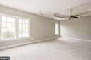Master Bedroom with Tray Ceiling - 14300 DOWDEN DOWNS DR, HAYMARKET