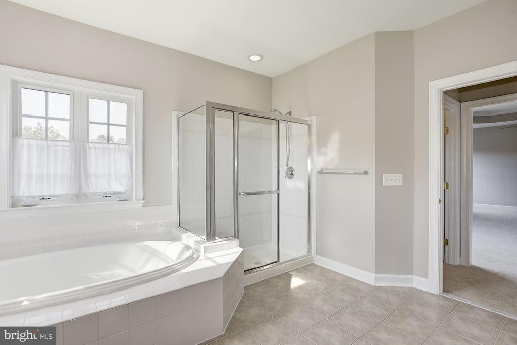 Master Bedroom with walk in closets - 14300 DOWDEN DOWNS DR, HAYMARKET