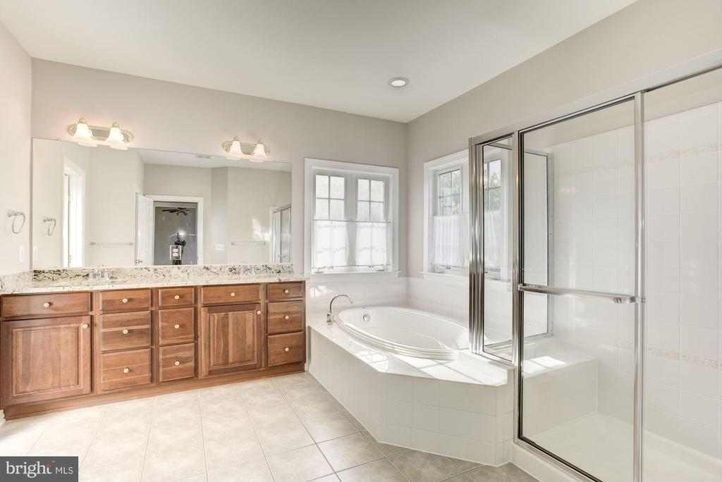Master Bedroom with soaking tub & shower - 14300 DOWDEN DOWNS DR, HAYMARKET