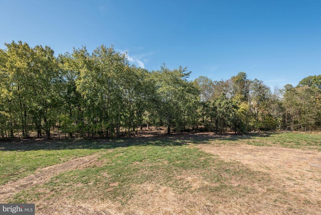 Rear Yard Treed Lot - 14300 DOWDEN DOWNS DR, HAYMARKET