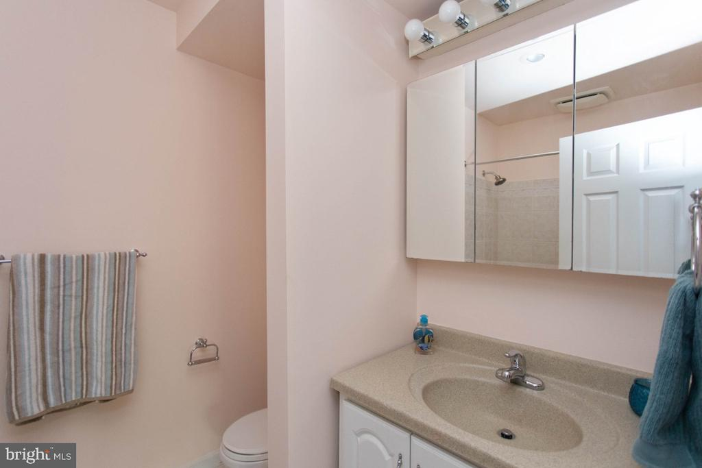 Lower Lever Full Bath Bath - 6646 DUCKETTS LN #28-6, ELKRIDGE