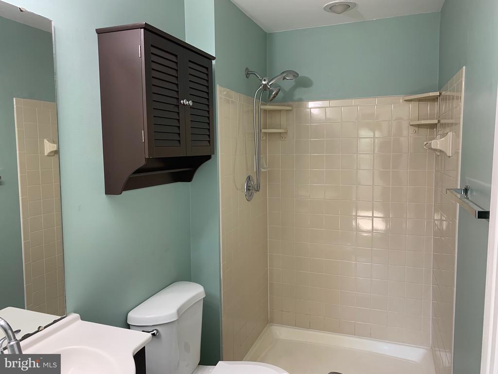 Master Bath - 21906 GREENTREE TER, STERLING