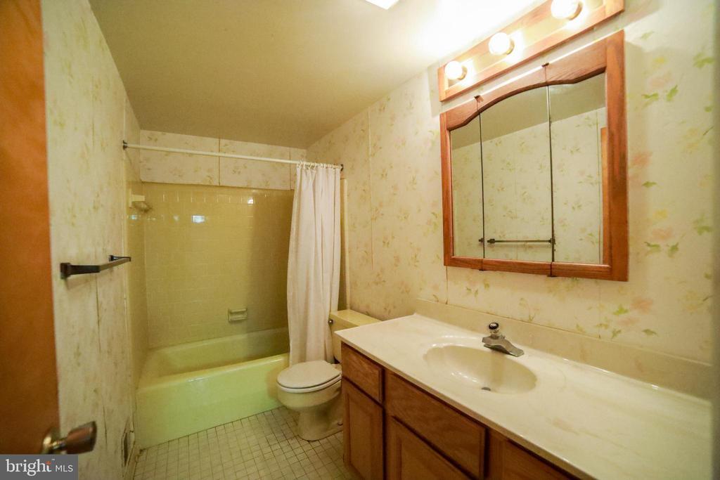 Lower level bathroom - 10209 WESTFORD DR, VIENNA