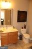 Hall bathroom - 267 LONG POINT DR, FREDERICKSBURG