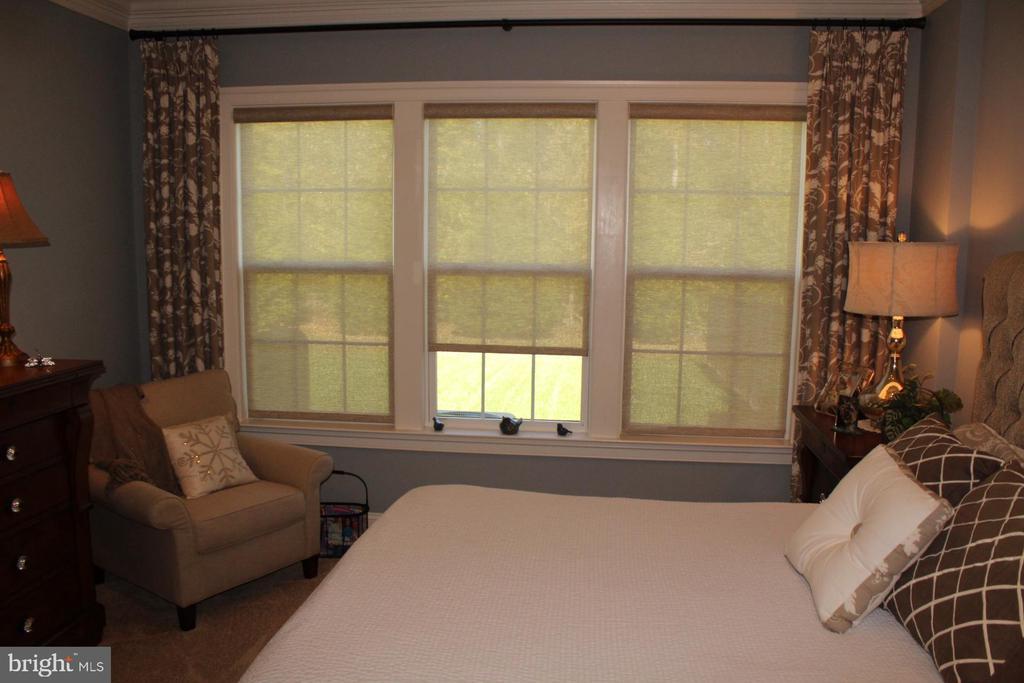 Master bedroom - 267 LONG POINT DR, FREDERICKSBURG