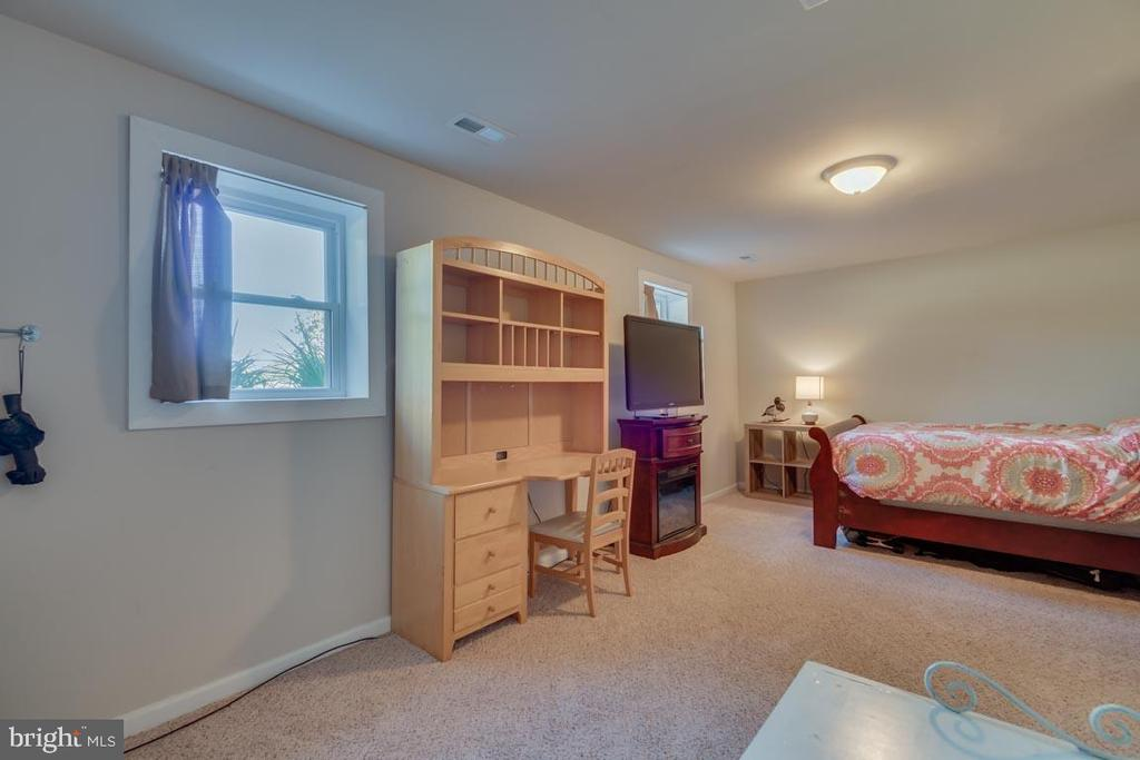 4th Bedroom in Basement - 1463 MOUNTAIN VIEW RD, STAFFORD