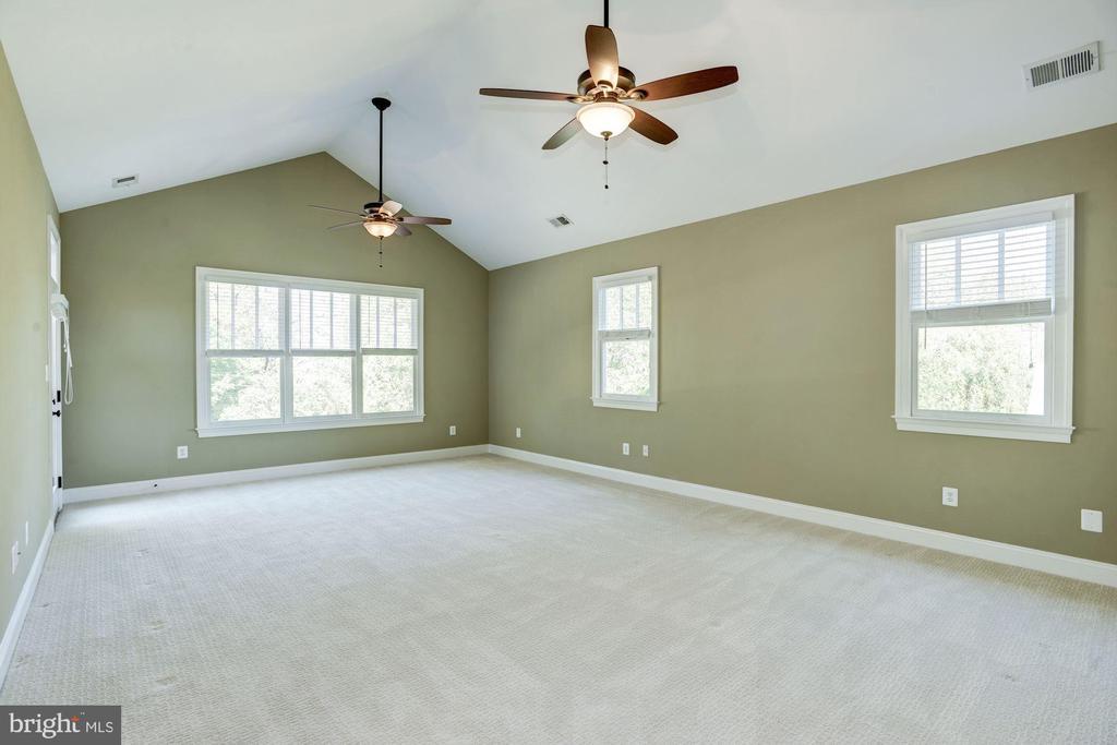Large Master Suite - 4507 16TH ST N, ARLINGTON
