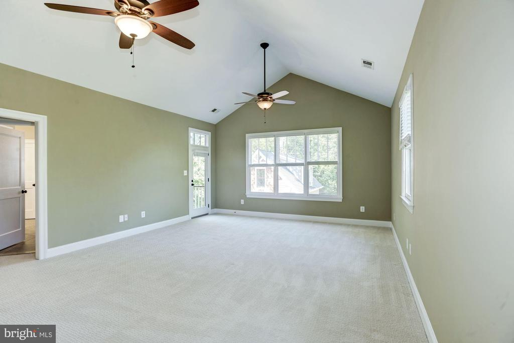 Master Suite w/vaulted ceilings - 4507 16TH ST N, ARLINGTON