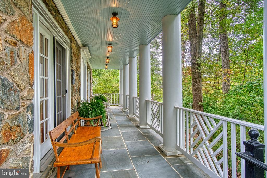 Enjoy a peaceful view atop the trees - 3812 MILITARY RD, ARLINGTON