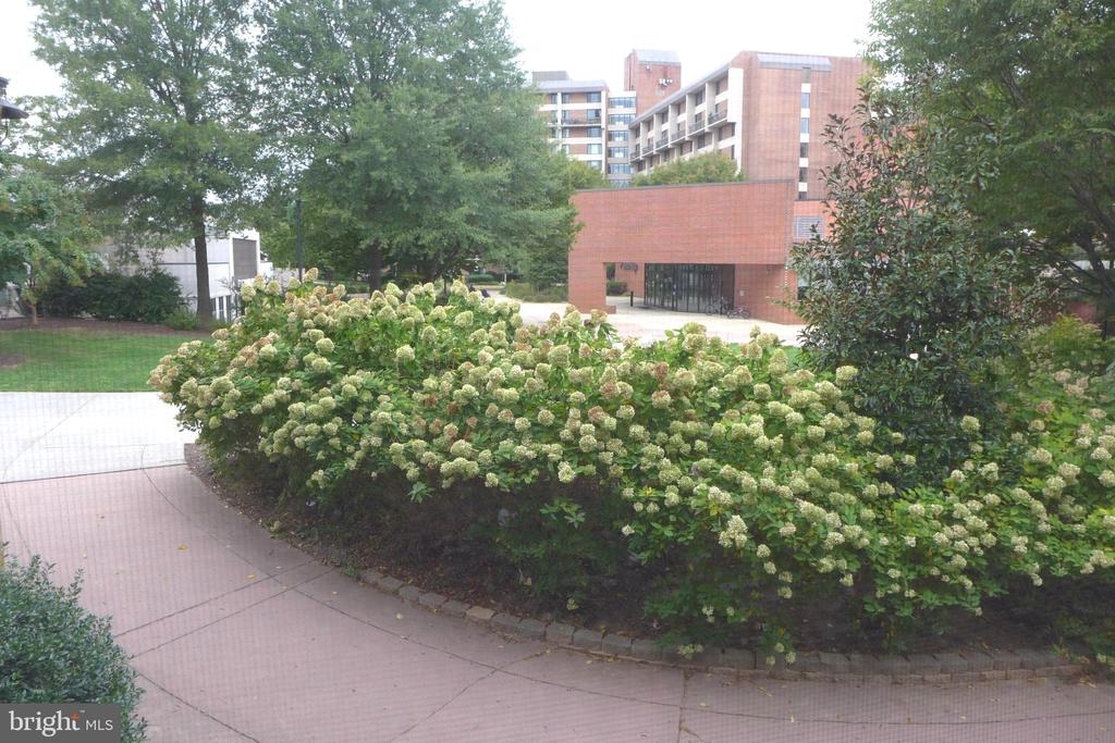 View from 3rd bedroom - 11872 BRETON CT #12A, RESTON