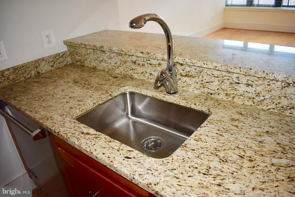 Kitchen sink - 4301 MILITARY RD NW #315, WASHINGTON