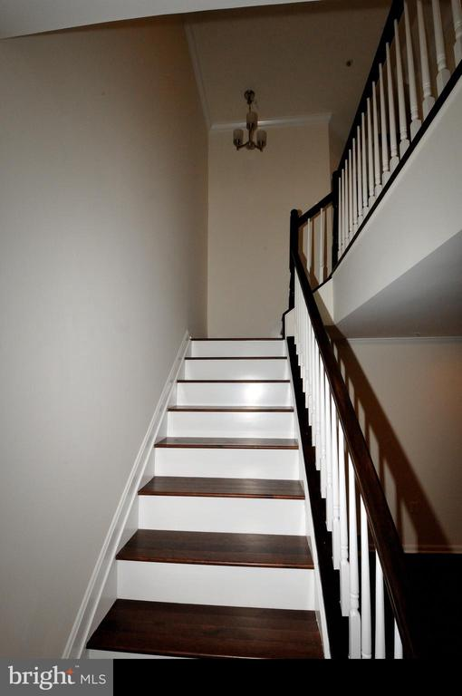Beautiful hardwwod steps - 862 HR DR SE, WASHINGTON