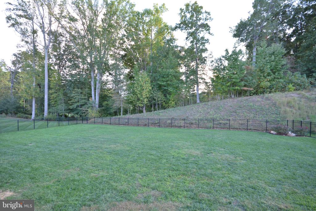 The back yard and Augustine Golf Course beyond. - 38 PRESIDENTIAL LN, STAFFORD