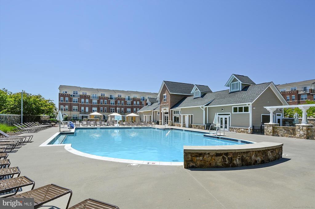 Pool - 42298 PEREGRINE TER, BRAMBLETON