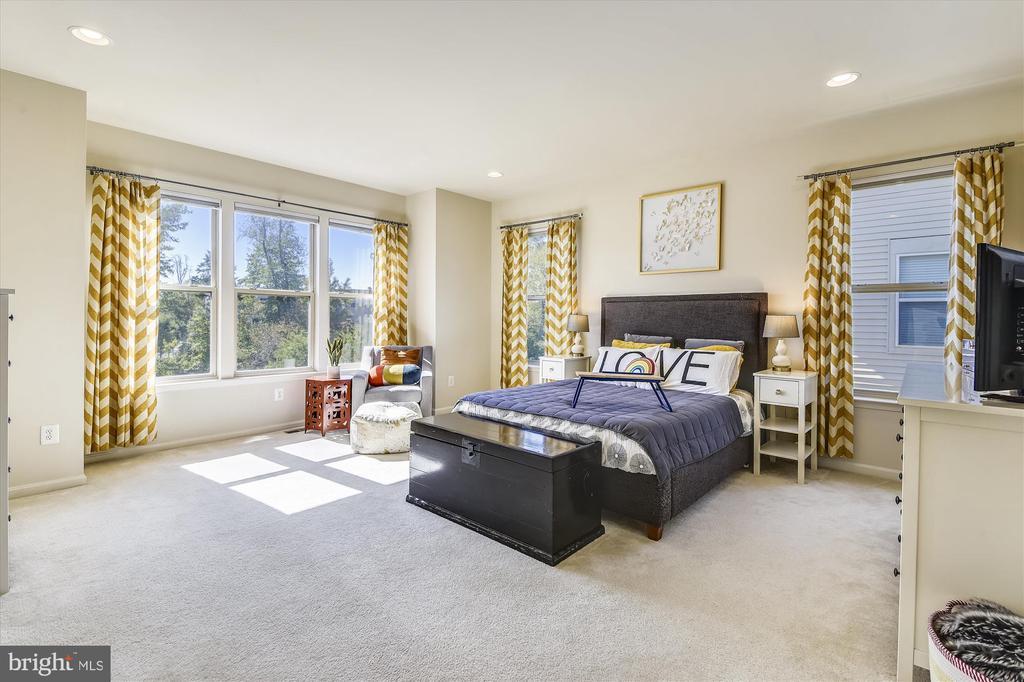 Spacious Master Bedroom - 42298 PEREGRINE TER, BRAMBLETON